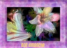 http://photo.ma-bimbo.com/fr/21/10485/moy/8387946.jpg