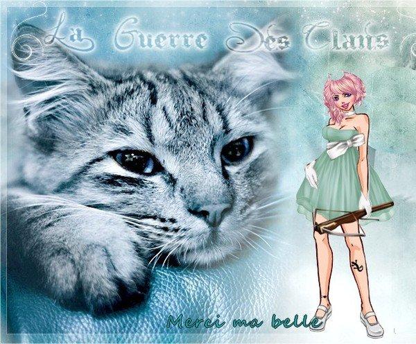 http://photo.ma-bimbo.com/fr/22/10627/moy/8500923.jpg