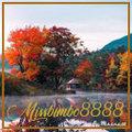 missbimbo8888