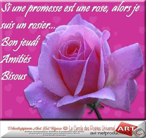 http://photo.ma-bimbo.com/fr/26/12897/moy/10317444.jpg