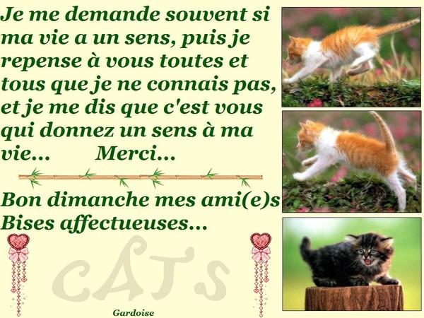 http://photo.ma-bimbo.com/fr/27/13131/moy/10504792.jpg