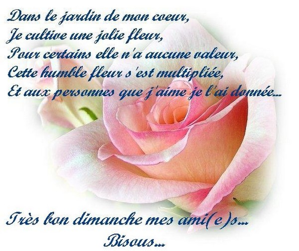 http://photo.ma-bimbo.com/fr/27/13280/moy/10623635.jpg