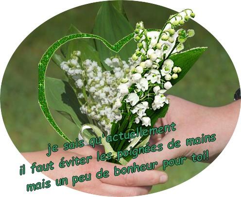 https://photo.ma-bimbo.com/fr/29/14281/moy/11424608.jpg