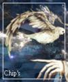 chipie79000