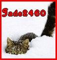 jade2460