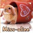 miss-alice34